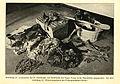 Ausgegrabene Körperteile von Anselm Hemberger - 1918.jpg