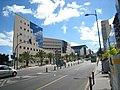 Avenida Tres de Mayo Sta Cruz.jpg