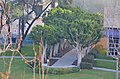 Avenue of the Arts Wyndham Hotel Address, 3350 Avenue of the Arts, Costa Mesa, CA 92626 Phone-(714) 751-5100 - panoramio (29).jpg
