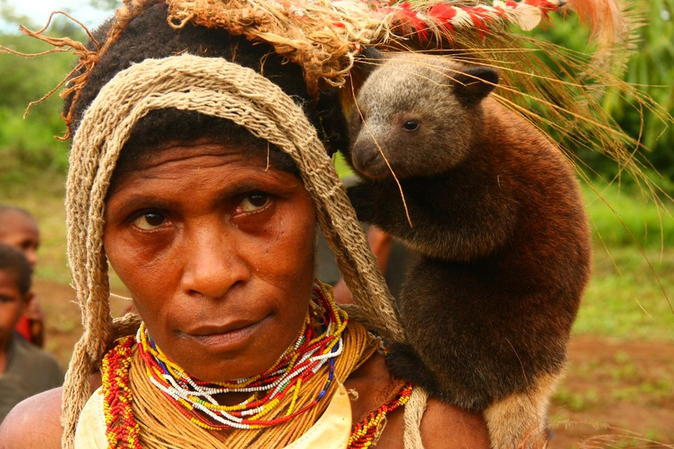 Baby tree kangaroo on the chiefs wifes shoulder -Papua New Guinea-17Oct2008