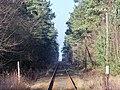 Bahnstrecke Eilenburg–Wittenberg5.jpg