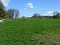 Bains-les-Bains-Paysage verdoyant près de la manufacture.jpg