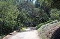 Balboa Park, San Diego, CA, USA - panoramio (43).jpg