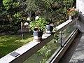 Balcony of Penelope and Harry Seidler House.jpg