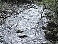 Banat,Nera Canyon - panoramio (16).jpg