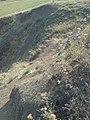 Basalt hill.pic.11..JPG