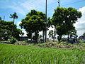 Bay,Lagunajf3974 10.JPG