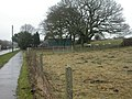 Beacon Hill, sheep - geograph.org.uk - 1725264.jpg