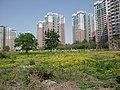 Beijing wangjing east garden - panoramio (5).jpg