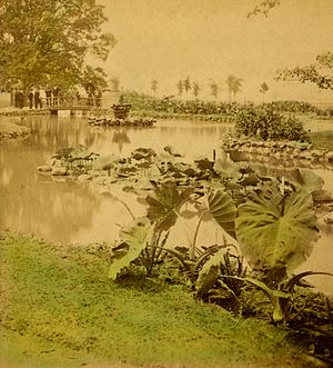 Belle Isle Park (Michigan) - Interior waterways in the park as they appeared soon after the park's creation
