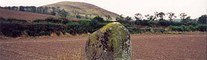 Battle of Homildon Hill - The Bendor stone at the site of the battle with Akeld Hill in the background. Humbleton Hill is out of shot to the left.