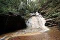 Berry creek falls - panoramio - Vadim Manuylov.jpg