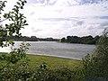 Bewl Water - geograph.org.uk - 527366.jpg
