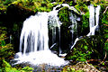 Blackforest Waterfalls.jpg