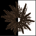 Blackish-brown spore print icon.png