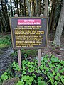 Blackwater Falls State Park WV 02.jpg