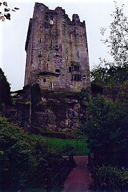 Blarney - Blarney Castle - View to northwest - geograph.org.uk - 1634152