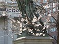 Blossoms at Lafayette's Feet (29502787512).jpg