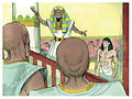 Book of Genesis Chapter 41-11 (Bible Illustrations by Sweet Media).jpg
