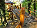 Botanička bašta Jevremovac, Beograd - Japanski vrt 22.jpg