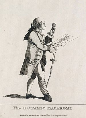 "Joseph Banks - Satire on Banks titled ""The Botanic Macaroni"", by Matthew Darly, 1772. A macaroni was a pejorative term used for a follower of exaggerated continental fashion in the 18th century"