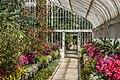 Botanic Gardens In Belfast - panoramio (4).jpg