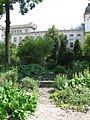 Botanische tuin - Sofia (4759499211).jpg