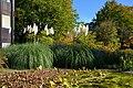 Botanischer Garten der Universität Zürich 2012-10-19 14-24-55.JPG