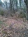 Brabandstaller Weg Ennepetal, 25.12.13 - panoramio (8).jpg