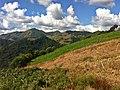 Brasil rural - panoramio (13).jpg