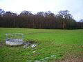 Brickyard Wood - geograph.org.uk - 344322.jpg