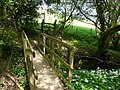 Bridge and Stile near Slew Hill - geograph.org.uk - 801020.jpg