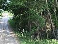 Brinkbäcken vid Tegelvretens gård.jpg