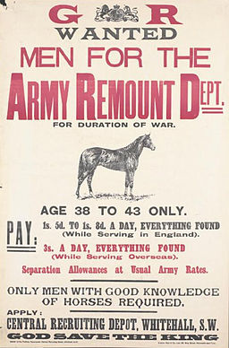British Army remount handlers wanted poster WWI