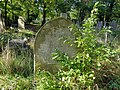Brockley & Ladywell Cemeteries 20191022 135627 (48946166573).jpg