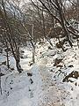 Bukhansan Trail.jpg