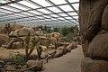 Burgers Zoo Desert Overzicht3.jpg