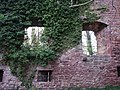 Burgruine Liebeneck, 1263 erste urkundliche Erwähnung, 1692 Zerstörung durch französ. General Chamilly. Wierderaufbau um 1770. - panoramio (3).jpg
