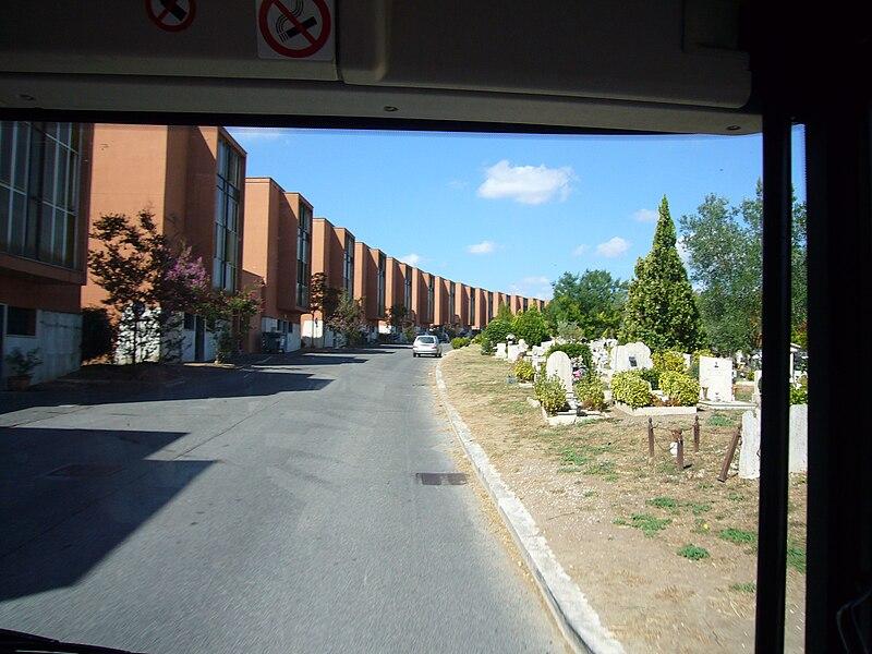 Buss Primaporta 1040411.JPG