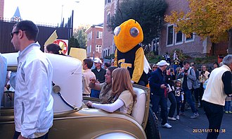Buzz (mascot) - Buzz riding on the back of the Ramblin' Wreck