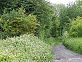 Byway, Amesbury Junction - geograph.org.uk - 2473524.jpg