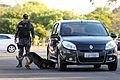 Cães da Polícia Militar são treinados para reforçar segurança na Olimpíada (28189840562).jpg