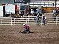 CFD Tie-down roping Ryan Watkins -3.jpg