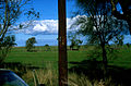 CSIRO ScienceImage 1828 Power pole in paddock.jpg