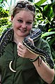 Cairns Wildlife Dome Python and Handler-04 (8232065710).jpg