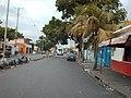 Calle entre Los samanes y Bellomonte - panoramio.jpg
