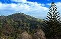 Camacha Madeira January 2014 - panoramio.jpg