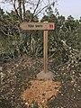 Camino de los Contrabandistas cerca del Teso Santo 2.jpg