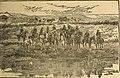 Canadischer familien Calender fuer das Jahr 1892 (1892) (14803835683).jpg