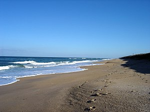 Canaveral National Seashore - A SSE view down the shore